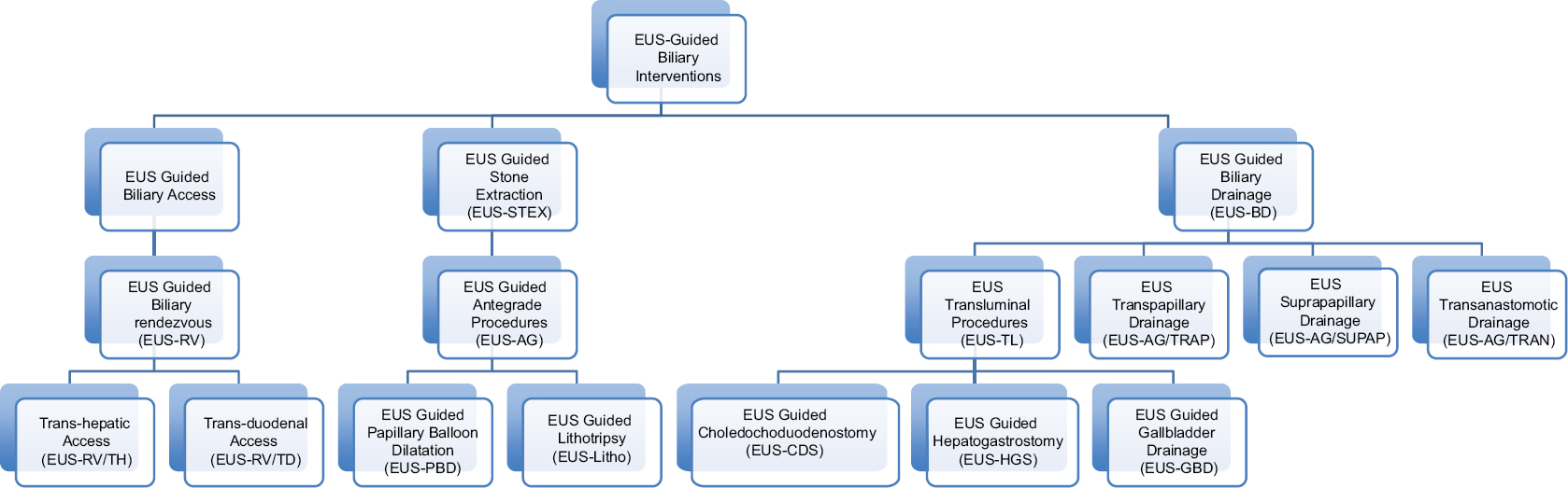 Figure 1: EUS-guided biliary interventions